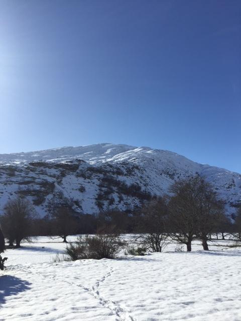Snow Gareth March 2015 2
